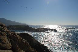 Point Lobos State Reserve.