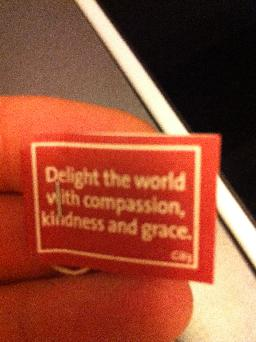 "Dagens Yogitepåse; ""Delight the World with compassion, kindness and grace""."